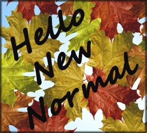 How to adjust to new normal with life change....
