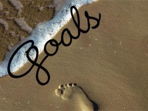 goals14